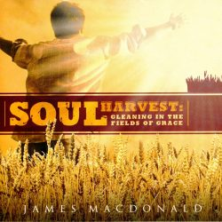 Soul Harvest: Gleaning in the Fields of Grace